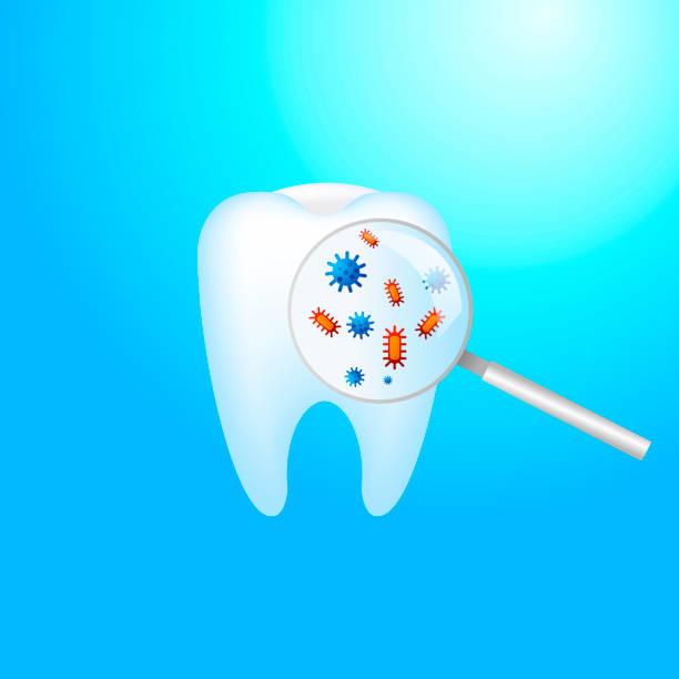 teeth germs,دلایل ایجاد جرم دندان,جرم دندان